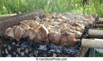 Barbecue With Delicious Grilled Meat On Grill.