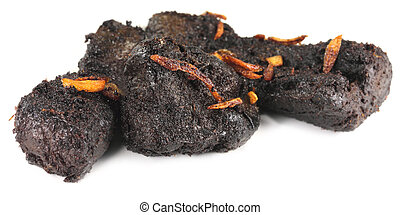 Barbecued beef over white background