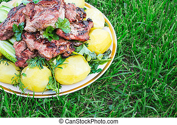 Barbecued meat with boiled potatoes and vegetables on the grass. gorizontal