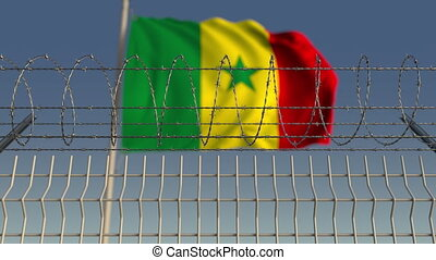 Barbed wire against waving flag of Senegal. Loopable 3D...