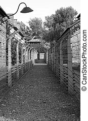 Barbed wire at Auschwitz - Barbed wire electrical fence at...