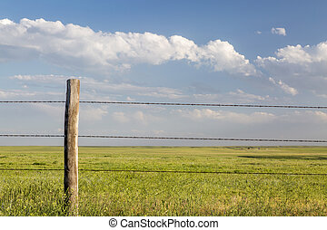 barbed wire cattle fence in Pawnee National Grassland in ...