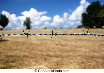 Barbed Wire closeup - Barbed wire closeup over brown fields ...