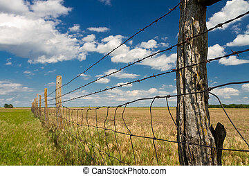 Kansas pasture with barbed wire fence; cumulus clouds, blue sky
