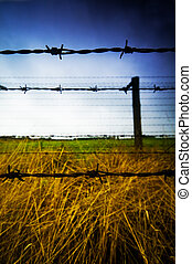 Barbed wire fence to prison