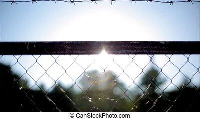 Barbed wire fence under sunshine. Summer day. Nobody. Jail. Sun beam
