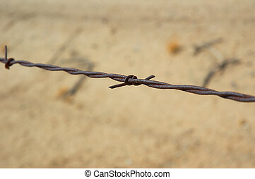 Macro shot of a barb on barbed-wire fencing