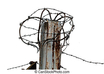 barbed wire isolated