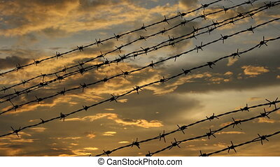 barbed wire on orange clouds