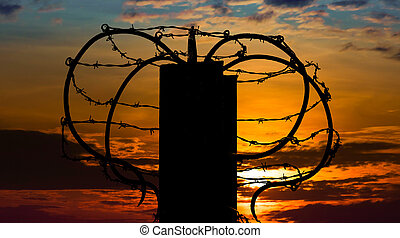 Barbed wire on sunset sky background.