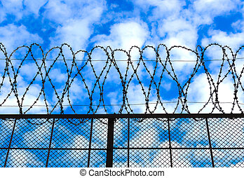 Barbed wire on the sky background