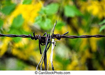 Barbed wire rusty