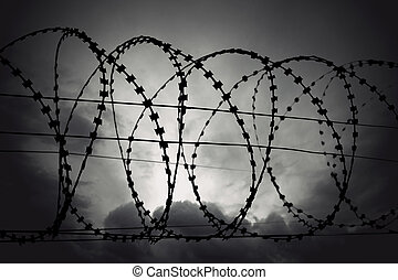 barbed wire - Barbed wire on moody gloomy gray sky