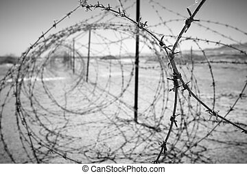 barbed wires - barbed wire at the border of a mine field