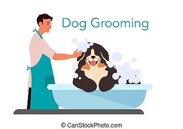 barbeiro, lavando, shampooing, cão, profissional, doméstico, cute, service.