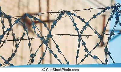 barbelé, concept, silhouette, barrière, secteur, illégal,...