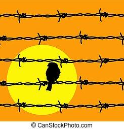 barbelé, soleil, limite, oiseau, vecteur, fil, prison