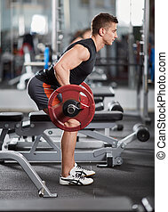 Barbell row, back workout
