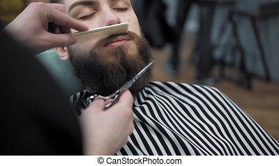 Barber doing beard's haircut with adult men with a long...
