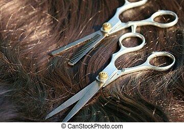 Barber scissors