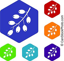 Barberry branch icons set hexagon