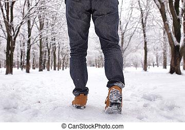barbuto, parco, inverno, camminare, uomo