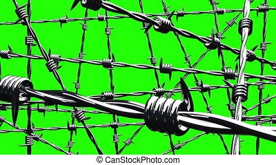 Barbwire on green chroma key.