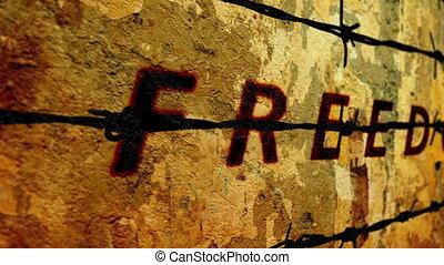 barbwire, wolność, przeciw, tekst