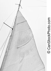 barca, vela, cielo, contro, navigazione