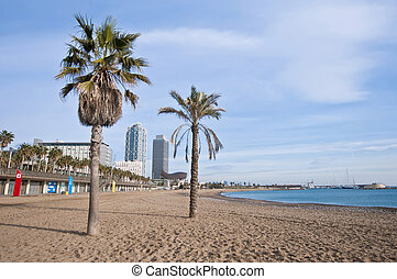 Barceloneta Beach located near Port Olimpic area in Barcelona, Spain