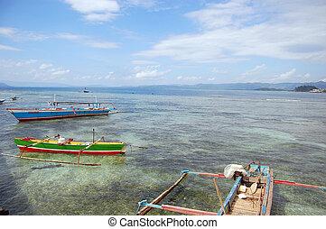 barche, costa marittima