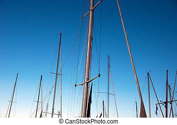 barche vela, alberi