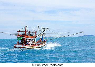 barco, pesca