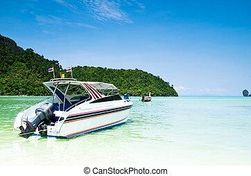 barco velocidade, em, mar