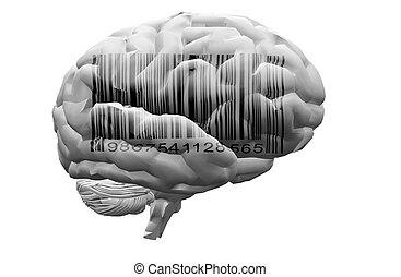 barcode, 上に, 脳