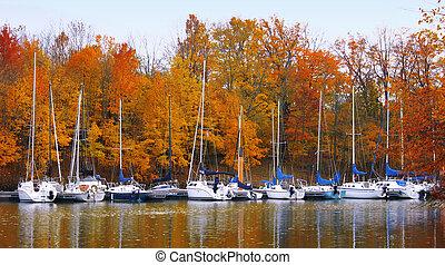 barcos, en, otoño