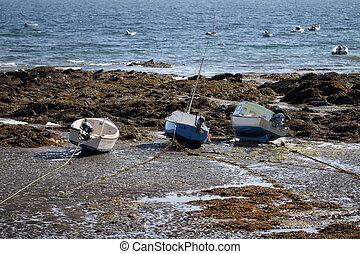 barcos pequeños, marea, bajo