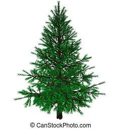 Bare Christmas tree