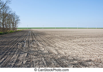 Bare farmland in the netherlands waiting for spring