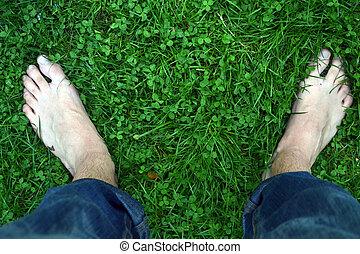 Bare Feet in Clover Field