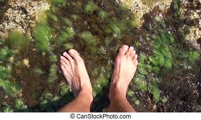 Bare feet in sea water - Bare feet washed in the sea water