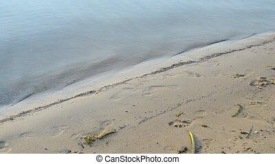 Bare feet of man walking on sand shore in summer