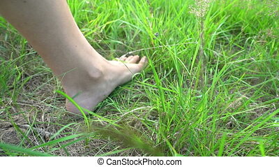 Bare feet walking on the grass, concept of freedom and...