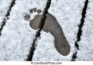 Bare Footprint in First Winter Snow