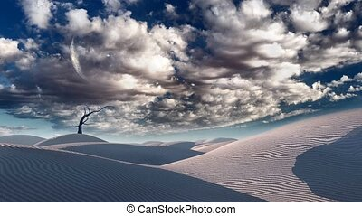 Bare tree in desert. Flock of birds in clouds