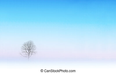 Bare tree in winter landscape