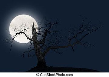 Bare tree with big bright moon