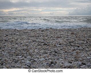 Barefoot Beach State Preserve