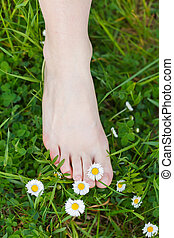 Barefoot on the grass