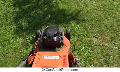 Barefoot worker man guy cut trim meadow grass with lawn mower. 4K